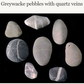 Source: https://teara.govt.nz/en/photograph/5121/greywacke-pebbles-with-quartz-veins