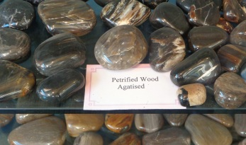 Agatised wood, Birdlings Flat Museum