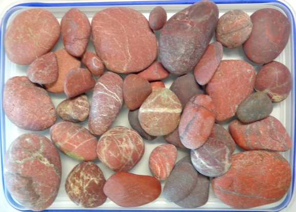 Dry stones, probably jasper, collected from Birdlings Flat in late June