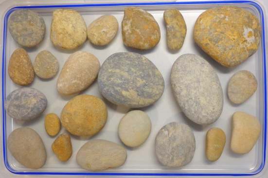 Dry stones, as collected in late June
