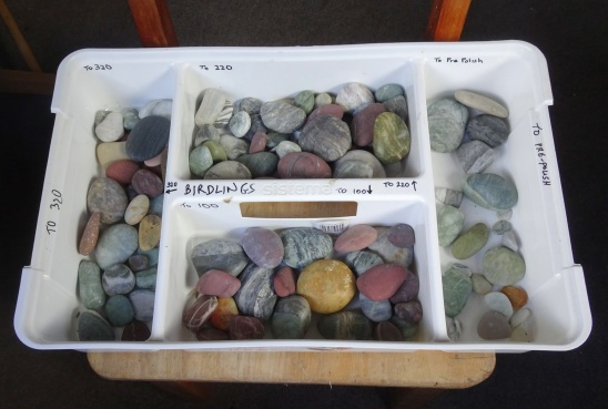 This tray is for stones collected at Birdlings Flat - the different compartments are for the next stage of tumbling.