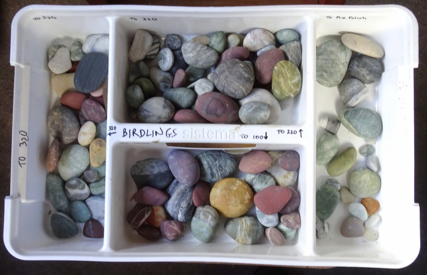 Tray for sorting and storing stones at different stages in tumbling.