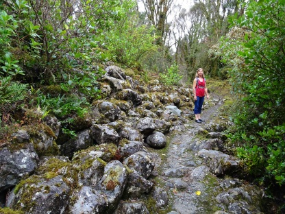 Along the track are many large boulders left over from the gold sluicing