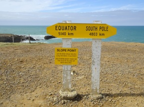 Slope Point is the southernmost part of the South Island
