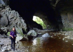 The cave beneath Oparara Arch