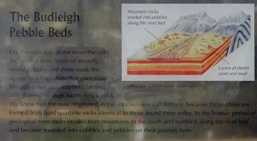 Information Panel section on the pebble beds