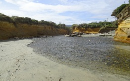 Having crossed Taunoa Stream, looking upstream.