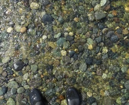 I always wear gumboots to make crossing the stream easier. Many interesting stones could be seen on the stream bed.
