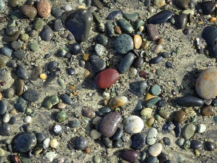 On the edge of a drift - dark red jasper pebble in centre.