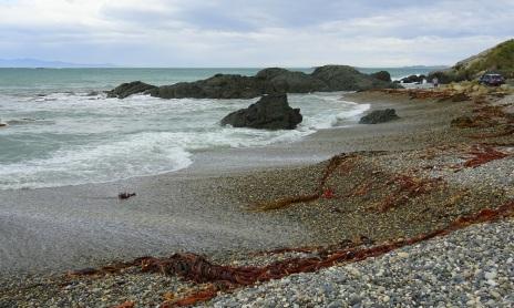 Back Beach, Riverton, Stewart Island in background (left)