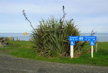 The viewpoint lies between Orepuki and Tuatapere