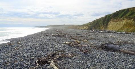 The beach near Orepuki