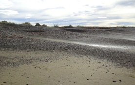 The amount of stones on the beach varies considerably - in March 2019, a high bank of stones had been cut into in scallop shapes by the waves