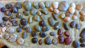 Sorting through the stones picked up at the beach below McCracken's Rest