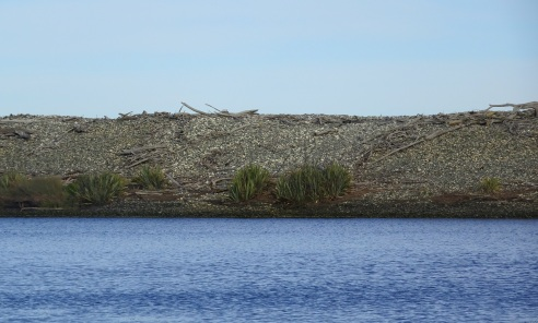 Looking across the lagoon to the gravel bank, beyond which is Te Waewae Bay