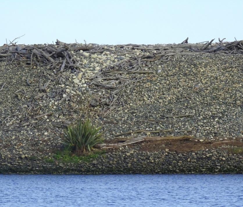 Gravel bar, Te Waewae Lagoon