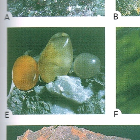 "Jocelyn Thornton (2003), ""The Field Guide to New Zealand Geology"", Plate 1E"