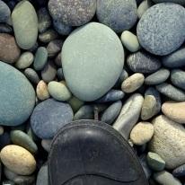 Fossil worm cast stone on Gemstone Beach