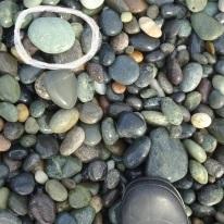 On Gemstone Beach, spotting a fossil worm cast stone (circled)