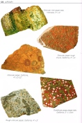 "Examples of orbicular jasper. Page 122 of Patti Polk (2016) ""Collecting Rocks, Gems and Minerals"""