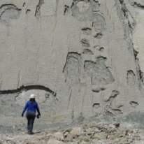 More dinosaur trace fossil footprints, Cal Orko, Bolivia. Source: https://www.theguardian.com/travel/2011/jul/15/dinosaur-tracking-bolivia-cal-orko