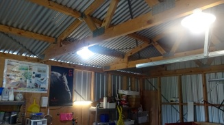 The two overhead lights in the shed, using compact florescent bulbs.