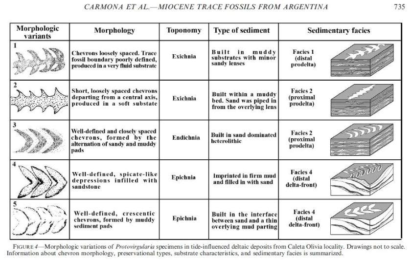 carmona et al fig 4