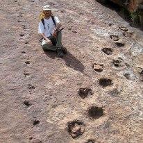 Dinosaur trace fossil footprints. Source: https://www.zmescience.com/science/geology/dinosaur-footprint-goldilocks-08022011