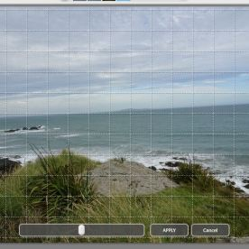Grid lines appear over the photo image