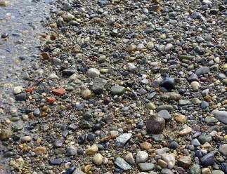 Stones on Beaumaris Beach