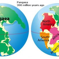 Pangaea. Source: https://geologyhubblog.wordpress.com/2017/07/14/pangaea-proxima-the-supercontinent-of-the-future