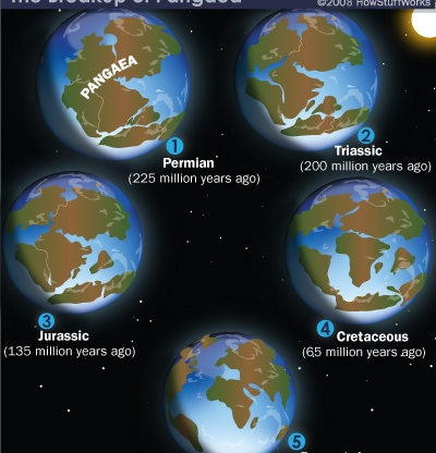 Breakup of Pangaea. Source: https://history.howstuffworks.com/historical-events/pangaea-supercontinent2.htm