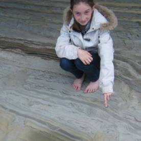 One of the 70 million year old dinosaur trace fossil footprints of northwest Nelson. Source: https://www.stuff.co.nz/science/83962010/dinosaur-footprints-found-in-nelson-on-show-in-lower-hutt