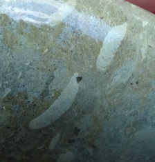 Fossil worm cast stone, Gemstone Beach