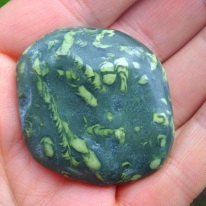 Fossilised worm cast stone