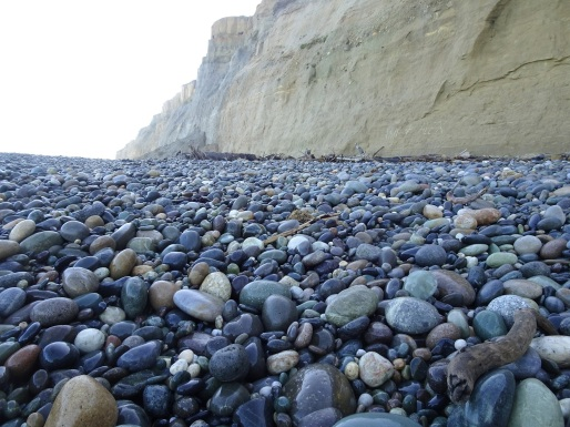 On my way up the beach, westwards, I kept close to the cliffs, the safest place to be. The stones were wet as they were in the shade, so fossicking was good.
