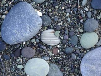 It is a banded argillite.