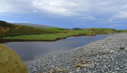 The lagoon of the Waimeamea River, created by the piling up of stones on the right, preventing the river from reaching the sea, though it seeps through the stones. The lagoon is twice the size I have previously seen.